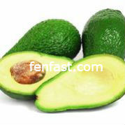 Different Types of Fats in your diet