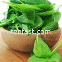 Curb Cravings with spinach extract