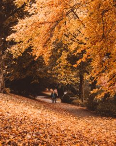 take your fall workouts outdoors